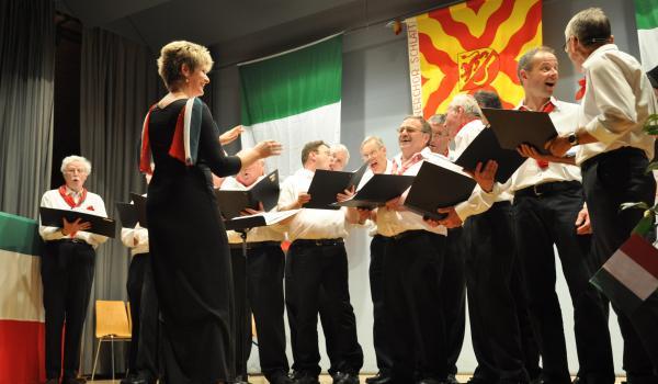 Viva Italia - Unterhaltung 2014